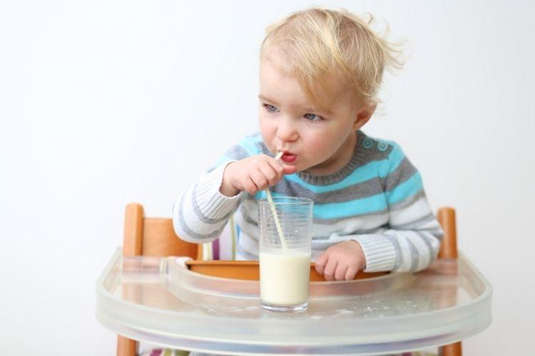 Toddler Milk