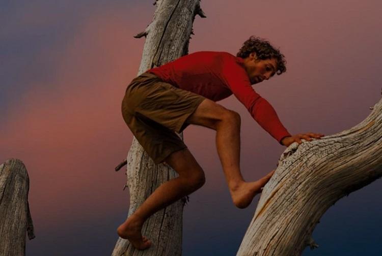 Best Patagonia Shorts