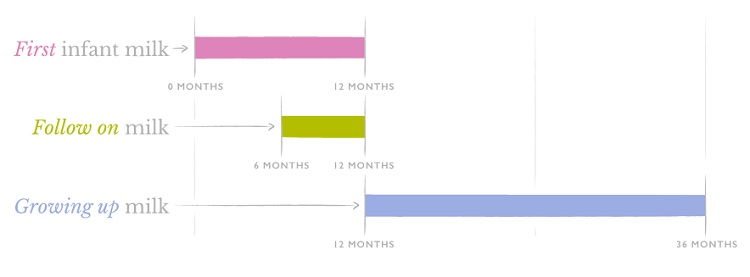 Nannycare Stages Explained