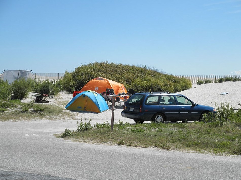 Top 10 Camping Destinations: Assateague State Park in Maryland